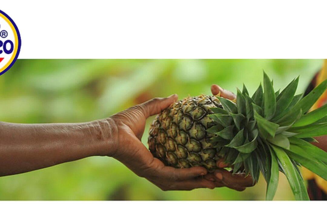 Ananas (Deutsch) – Mananasi (Swahili)
